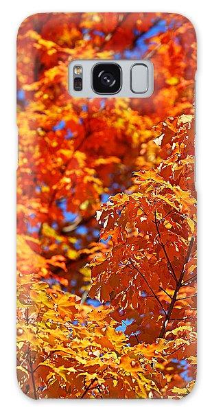 Fall Foliage Colors 17 Galaxy Case