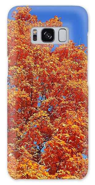 Fall Foliage Colors 18 Galaxy Case