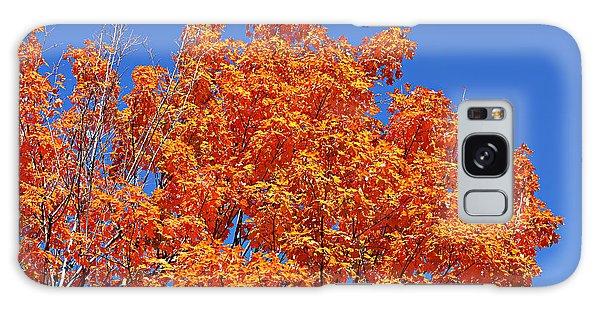 Fall Foliage Colors 19 Galaxy Case