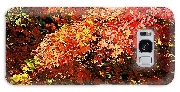 Fall Foliage Colors 21 Galaxy Case