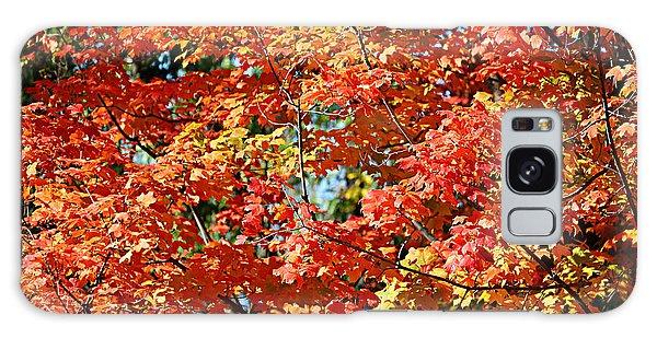 Fall Foliage Colors 22 Galaxy Case