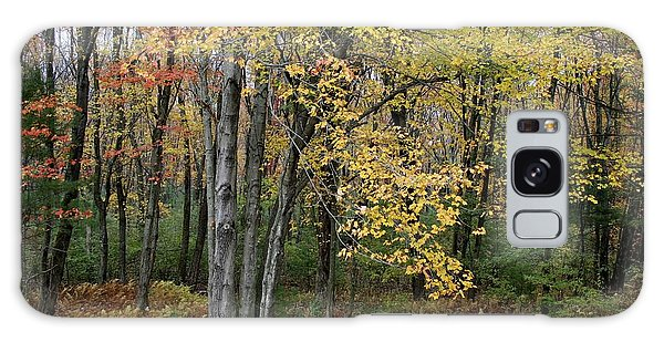 Fall Foliage Galaxy Case