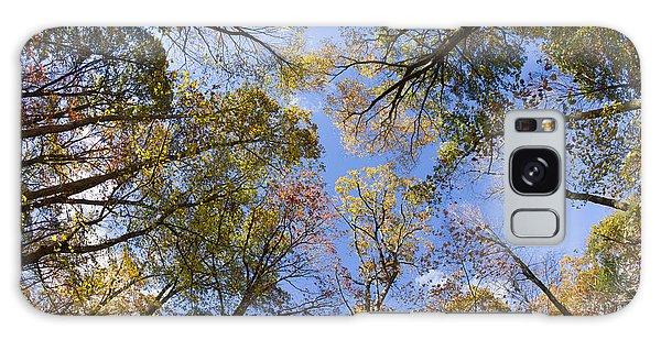 Fall Foliage - Look Up 2 Galaxy Case