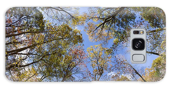 Fall Foliage - Look Up 2 Galaxy Case