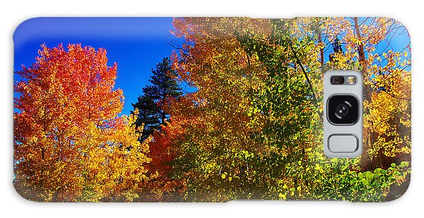 Fall Foliage Palette Galaxy Case