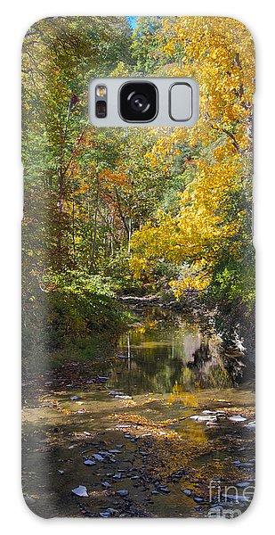 Fall Foliage Galaxy Case