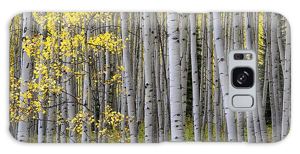 Fall Forest Galaxy Case by The Forests Edge Photography - Diane Sandoval