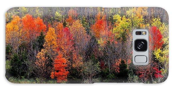 Fall In Dayton Ohio Galaxy Case
