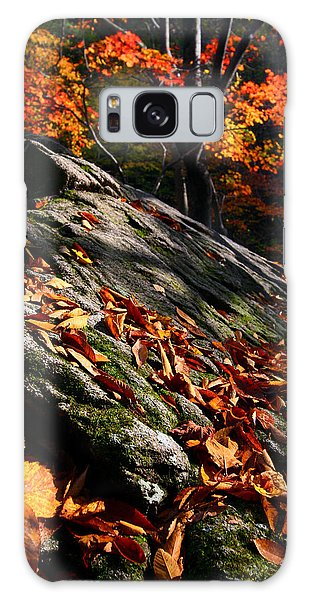 Galaxy Case featuring the photograph Fall In Gyeryongsan by Brad Brizek