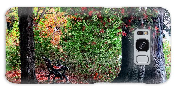 Fall In Henes Park Galaxy Case