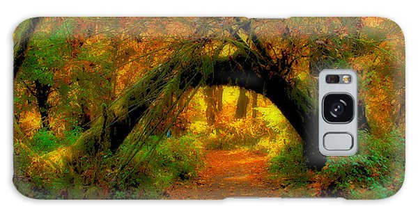 Fall In Olympia National Forest Galaxy Case