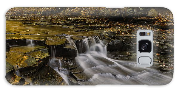 Fall In The Metroparks Galaxy Case