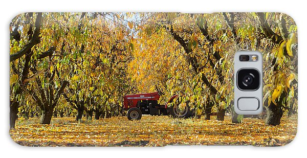 Fall In The Peach Orchard Galaxy Case