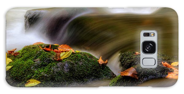 Fall Leaves On Mossy Rocks Galaxy Case