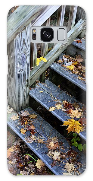 Fall Leaves On Steps Galaxy Case