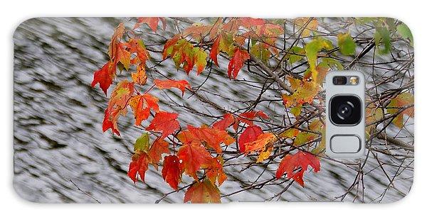 Fall Leaves Over The Lake Galaxy Case