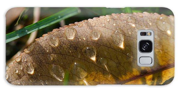 Fall Morning Leaf And Dew Galaxy Case
