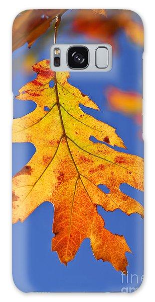 Leaf Galaxy Case - Fall Oak Leaf by Elena Elisseeva