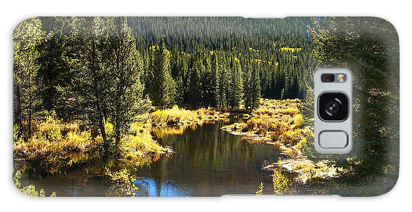 Fall Pond Cottonwood Pass Galaxy Case