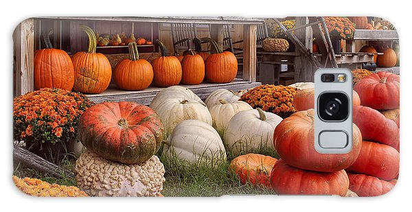 Fall Pumpkins And Gourds Galaxy Case by Greg Jackson