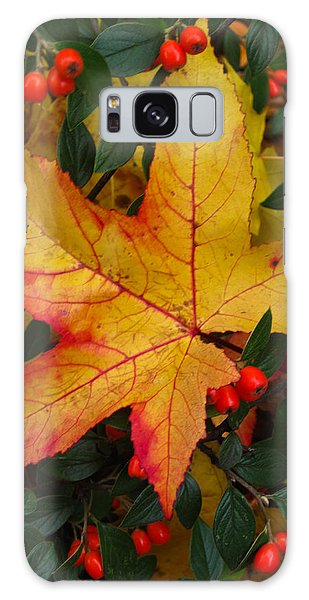 Fall Splendor Galaxy Case