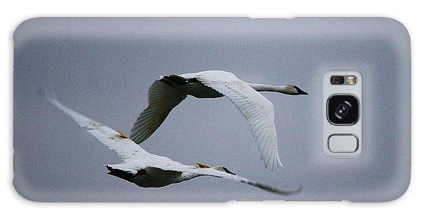 Fall Swans Galaxy Case by Al Fritz