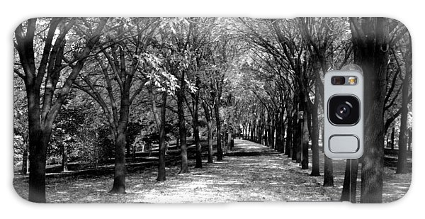 Fall Tree Promenade Landscape Galaxy Case