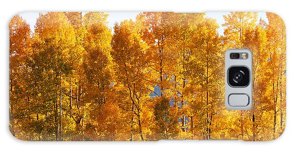 Galaxy Case featuring the photograph Fall Trees 8x10 Crop by Kate Avery