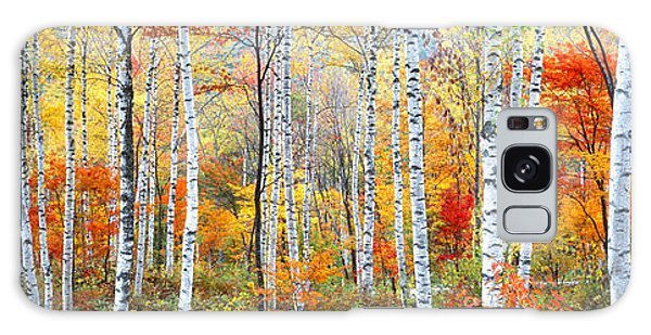 Horizontal Galaxy Case - Fall Trees, Shinhodaka, Gifu, Japan by Panoramic Images