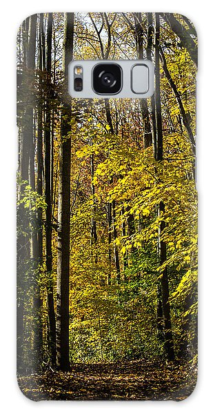 Fall Walk In The Woods Galaxy Case