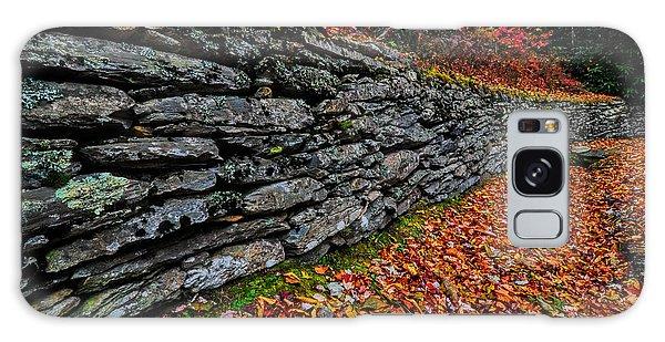 Fall Wall Galaxy Case
