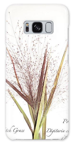 Fall Witch Grass Galaxy Case