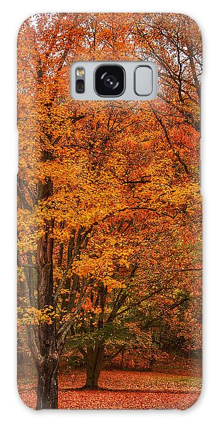 Fallen Leaves II Galaxy Case