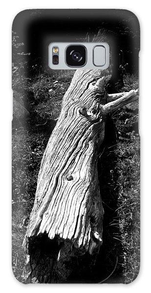 Fallen Tree - Whistler Mountain Galaxy Case by Amanda Holmes Tzafrir