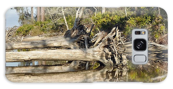 Fallen Trees Reflected In A Beach Tidal Pool Galaxy Case
