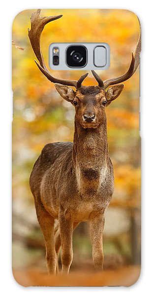 Autumn Galaxy S8 Case - Fallow Deer In Autumn Forest by Roeselien Raimond