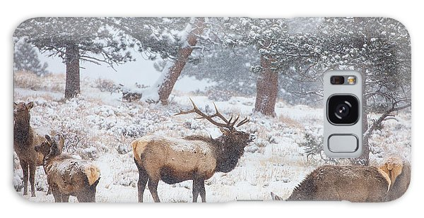 Winter Galaxy Case - Family Man by Darren  White