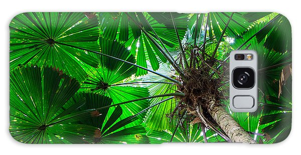 Fan Palm Tree Of The Rainforest Galaxy Case