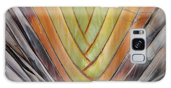 Fan Palm Trunk Galaxy Case