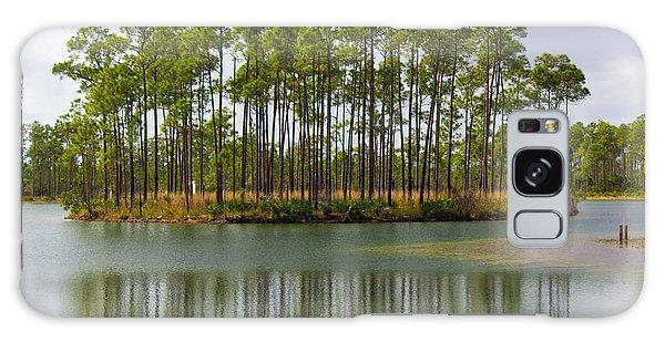 Fantasy Island In The Florida Everglades Galaxy Case