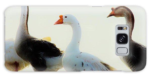 Farm Geese 2 Galaxy Case