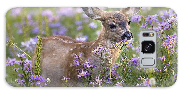 Fawn In Asters Galaxy Case by Sonya Lang