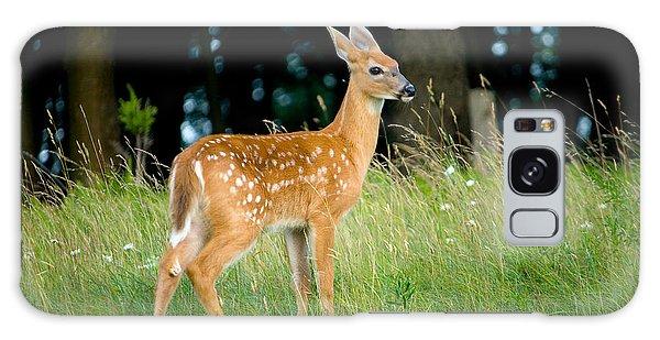 Deer Galaxy Case - Fawn by Shane Holsclaw