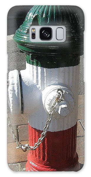 Federal Hill Fire Hydrant Galaxy Case by Bruce Carpenter