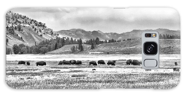 Feeding Bison And Scenic View  Galaxy Case