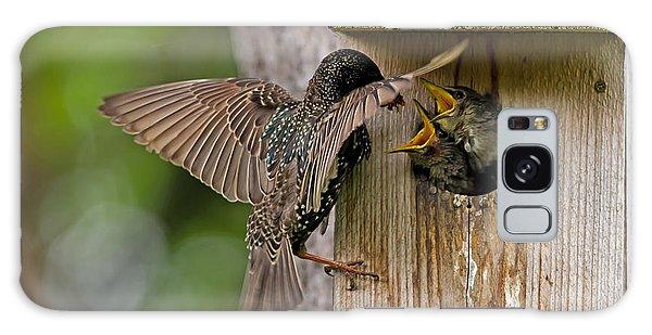 Feeding Starlings Galaxy Case by Torbjorn Swenelius