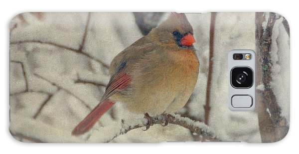 Female Cardinal In The Snow II Galaxy Case
