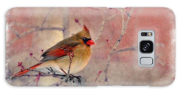Female Cardinal Portrait Galaxy Case