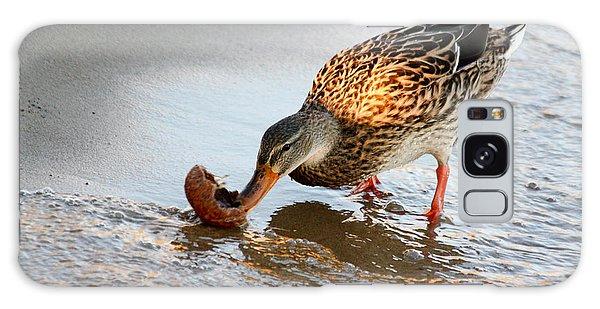 Female Mallard Duck  Galaxy Case
