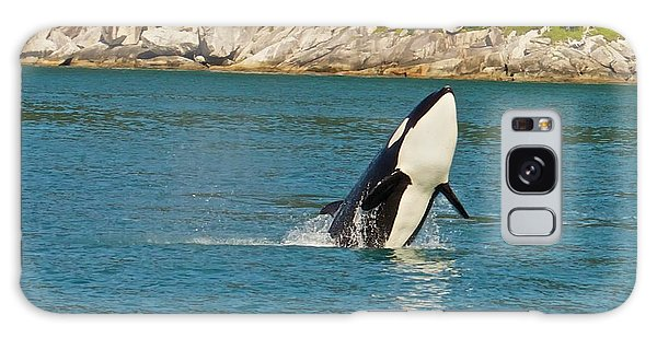 Female Orca Cheval Island Alaska Galaxy Case by Michael Rogers